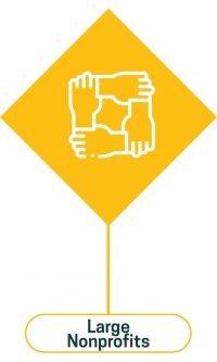 Pionero Philanthropy large nonprofits icon